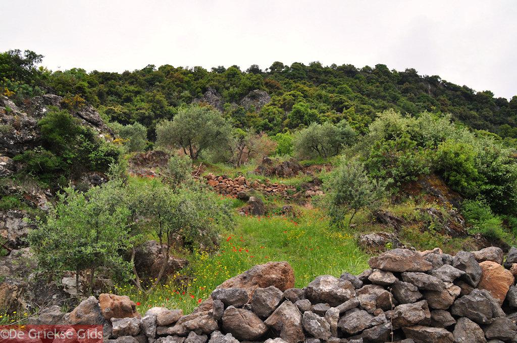 foto Tussen Perama en Axos