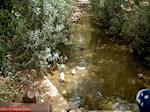 Klein riviertje in Fodele dorp - Foto van De Griekse Gids