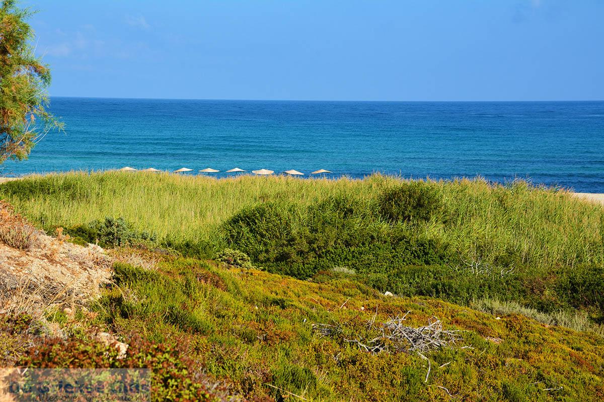 foto Strand Mesakti Armenistis Ikaria | Griekenland | Foto 29