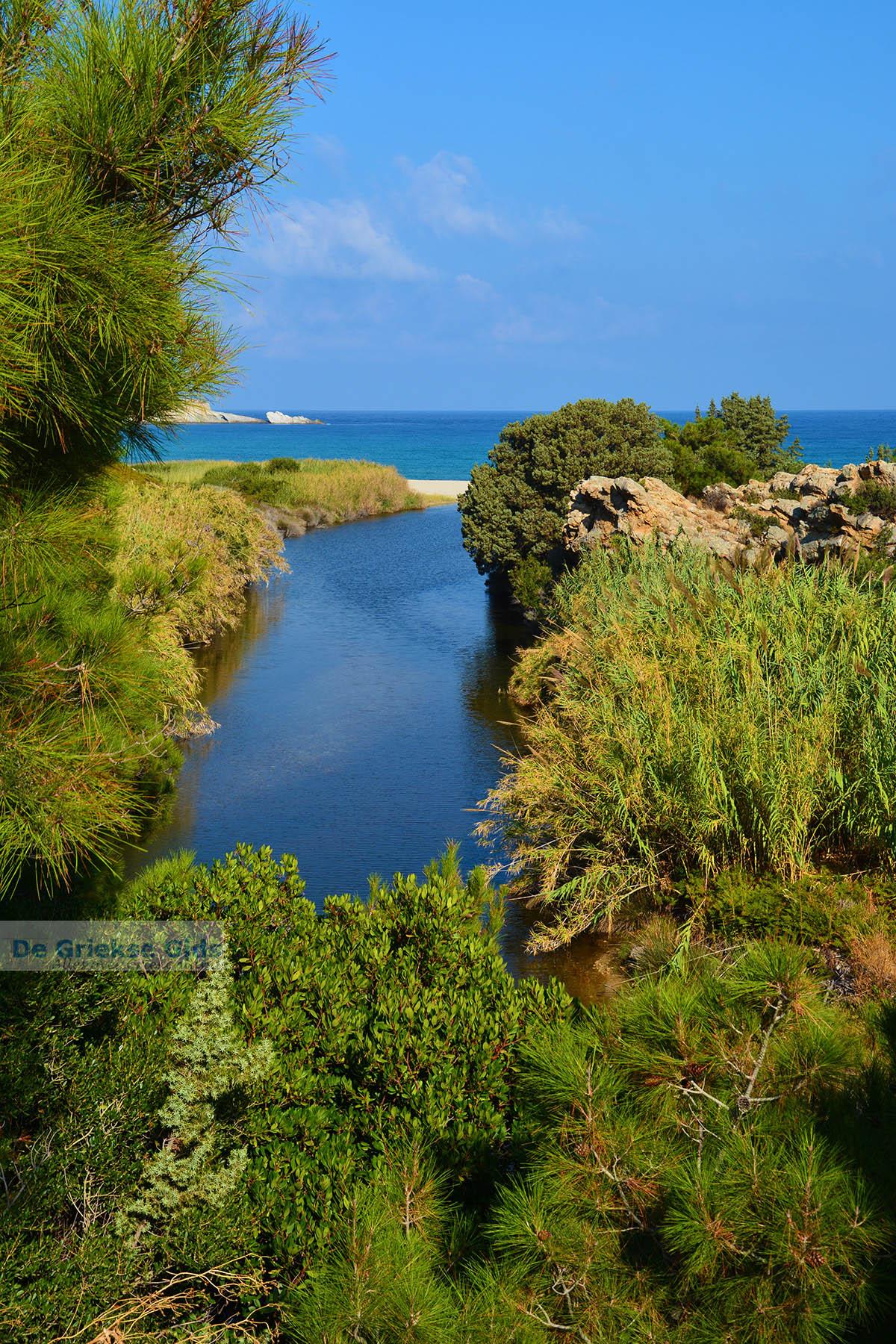 foto Bij Mesakti Armenistis Ikaria | Gialiskari Ikaria | Foto 5