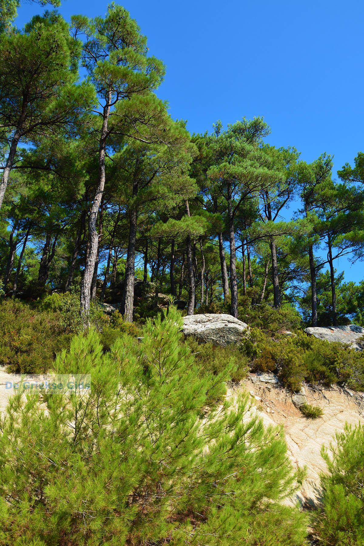 foto Berggebied Raches Ikaria | Griekenland | Foto 27