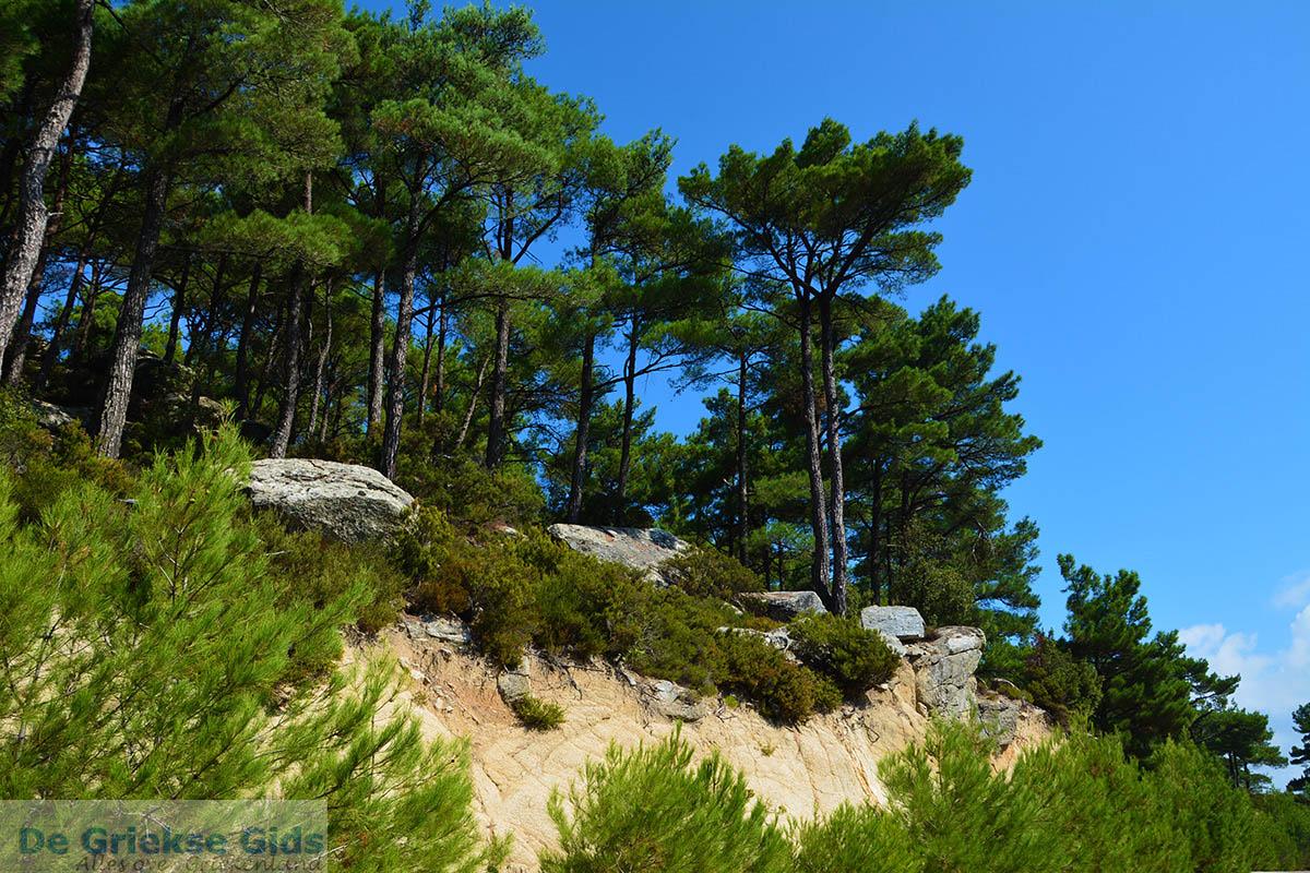 foto Berggebied Raches Ikaria | Griekenland | Foto 28