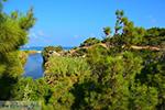 Bij Mesakti Armenistis Ikaria | Gialiskari Ikaria | Foto 3 - Foto van De Griekse Gids