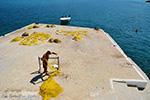 GriechenlandWeb.de Armenistis Ikaria | Griechenland | Foto 55 - Foto GriechenlandWeb.de