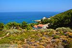Avlaki Ikaria | Griekenland | Foto 3 - Foto van De Griekse Gids
