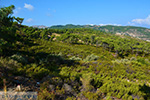 Berggebied Raches Ikaria | Griekenland | Foto 2 - Foto van De Griekse Gids