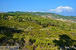 Berggebied Raches Ikaria | Griekenland | Foto 3 - Foto van De Griekse Gids