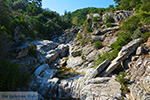 GriechenlandWeb.de Berggebied Raches Ikaria | Griechenland | Foto 7 - Foto GriechenlandWeb.de