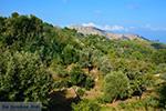 Berggebied Raches Ikaria | Griekenland | Foto 9 - Foto van De Griekse Gids