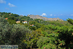GriechenlandWeb.de Berggebied Raches Ikaria | Griechenland | Foto 19 - Foto GriechenlandWeb.de