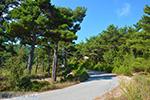 Berggebied Raches Ikaria | Griekenland | Foto 21 - Foto van De Griekse Gids