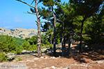Berggebied Raches Ikaria | Griekenland | Foto 26 - Foto van De Griekse Gids