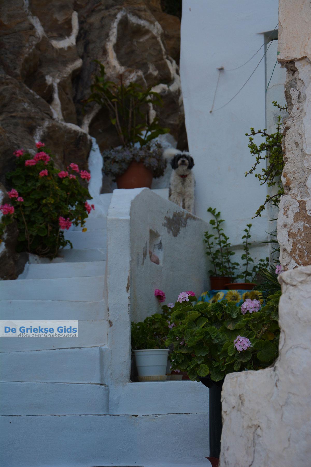foto Chora Ios - Eiland Ios - Cycladen Griekenland foto 99
