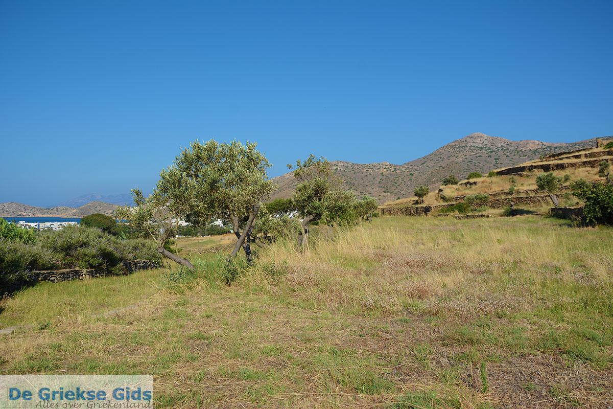 foto Skarkos Chora Ios - Eiland Ios - Cycladen Griekenland foto 171