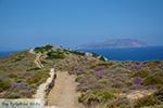 Plakotos Ios - Eiland Ios - Cycladen Griekenland foto 250 - Foto van De Griekse Gids