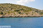 Eiland Iraklia | Cycladen | De Griekse Gids | nr 12 - Foto van De Griekse Gids