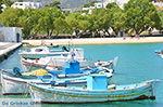 Eiland Iraklia | Cycladen | De Griekse Gids | nr 54 - Foto van De Griekse Gids