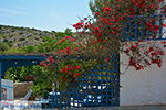 Eiland Iraklia | Cycladen | De Griekse Gids | nr 61 - Foto van De Griekse Gids