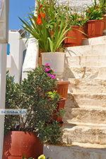 GriechenlandWeb.de Eiland Iraklia | Kykladen | GriechenlandWeb.de | nr 86 - Foto GriechenlandWeb.de