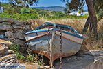 GriechenlandWeb.de Eiland Iraklia | Kykladen | GriechenlandWeb.de | nr 109 - Foto GriechenlandWeb.de