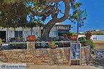 Eiland Iraklia | Cycladen | De Griekse Gids | nr 116 - Foto van De Griekse Gids