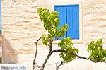 Eiland Iraklia | Cycladen | De Griekse Gids | nr 130 - Foto van De Griekse Gids