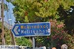 Melitsachas Myrties - Eiland Kalymnos -  Foto 19 - Foto van De Griekse Gids