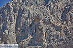 Myrties, aan de overkant Telendos - Eiland Kalymnos -  Foto 39 - Foto van De Griekse Gids