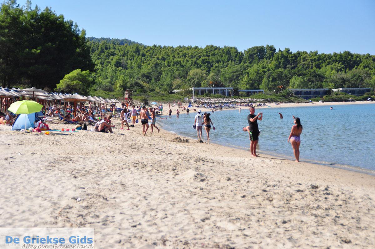foto Chrousso beach bij Paliouri   Kassandra Chalkidiki   De Griekse Gids foto 4