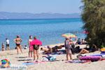 Chanioti | Kassandra Chalkidiki | De Griekse Gids foto 12 - Foto van De Griekse Gids