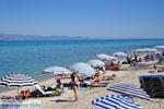 Chanioti | Kassandra Chalkidiki | De Griekse Gids foto 15 - Foto van De Griekse Gids