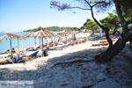 Chrousso beach bij Paliouri | Kassandra Chalkidiki | De Griekse Gids foto 1 - Foto van De Griekse Gids