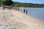 Chrousso beach bij Paliouri | Kassandra Chalkidiki | De Griekse Gids foto 9 - Foto van De Griekse Gids