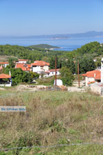 Paliouri | Kassandra Chalkidiki | De Griekse Gids foto 1 - Foto van De Griekse Gids
