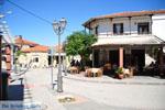 Paliouri | Kassandra Chalkidiki | De Griekse Gids foto 6 - Foto van De Griekse Gids