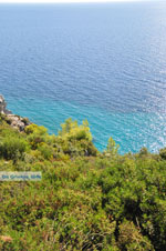 Loutra Agia Paraskevi | Kassandra Chalkidiki | De Griekse Gids foto 5 - Foto van De Griekse Gids