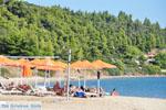 Skioni en Nea Skioni | Kassandra Chalkidiki | De Griekse Gids foto 12 - Foto van De Griekse Gids