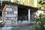Skala Fourka en Fourka | Kassandra Chalkidiki | De Griekse Gids foto 4 - Foto van De Griekse Gids
