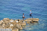Nea Fokea | Kassandra Chalkidiki | De Griekse Gids foto 6 - Foto van De Griekse Gids