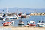 Nea Fokea | Kassandra Chalkidiki | De Griekse Gids foto 25 - Foto van De Griekse Gids