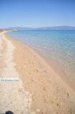 Nea Potidea | Kassandra Chalkidiki | De Griekse Gids foto 12 - Foto van De Griekse Gids