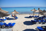Afytos (Athytos) | Kassandra Chalkidiki | De Griekse Gids foto 72 - Foto van De Griekse Gids