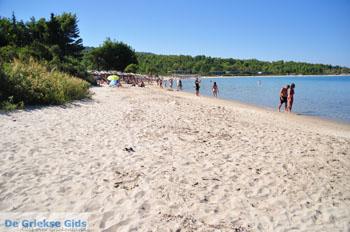 Chrousso beach bij Paliouri | Kassandra Chalkidiki | De Griekse Gids foto 3 - Foto van De Griekse Gids