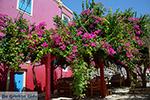 Megisti Kastelorizo - Eiland Kastelorizo Dodecanese - Foto 129 - Foto van De Griekse Gids