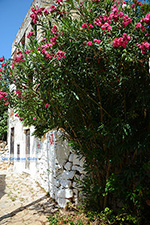 Megisti Kastelorizo - Eiland Kastelorizo Dodecanese - Foto 131 - Foto van De Griekse Gids