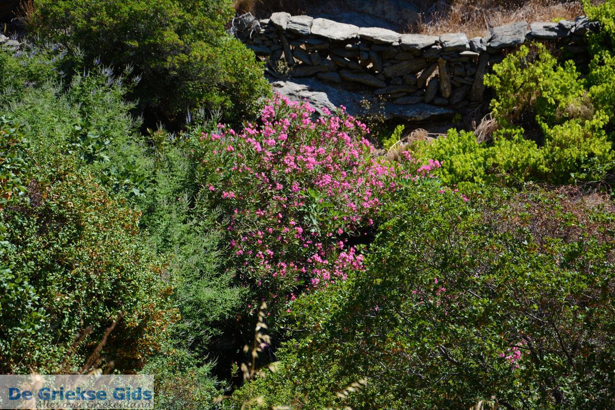 foto Bergpad-wandelpad naar Karthaia | Kato Meria | Kea (Tzia) 23