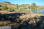 GriechenlandWeb.de Vourkari | Kea (Tzia) | Griechenland foto 14 - Foto GriechenlandWeb.de