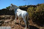 Onderweg naar Kato Meria | Kea (Tzia) foto 10 - Foto van De Griekse Gids