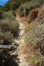 Bergpad-wandelpad naar Karthaia | Kato Meria | Kea (Tzia) 5