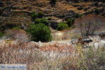 Bergpad-wandelpad naar Karthaia | Kato Meria | Kea (Tzia) 14 - Foto van De Griekse Gids